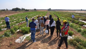 35 African entrepreneurs to join the 15th Africa-Israel Agricultural Trade Mission